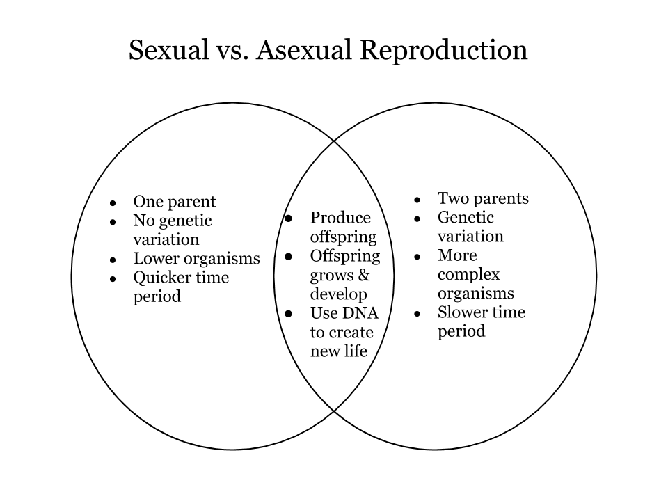 Main disadvantages of asexual reproduction in plant